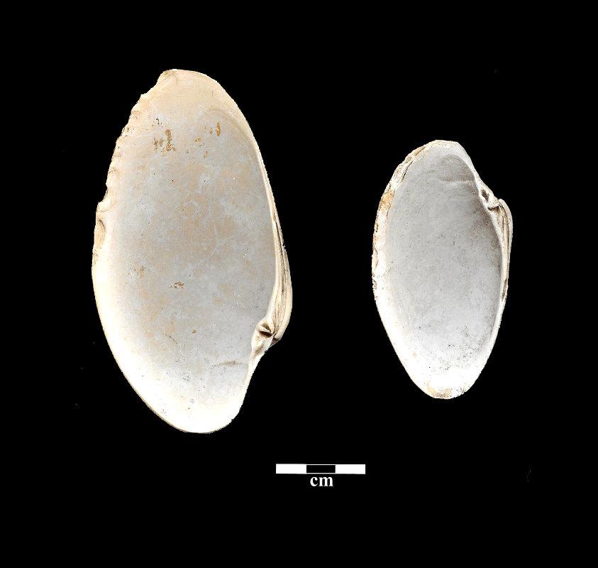 prehistory-sunray-tools