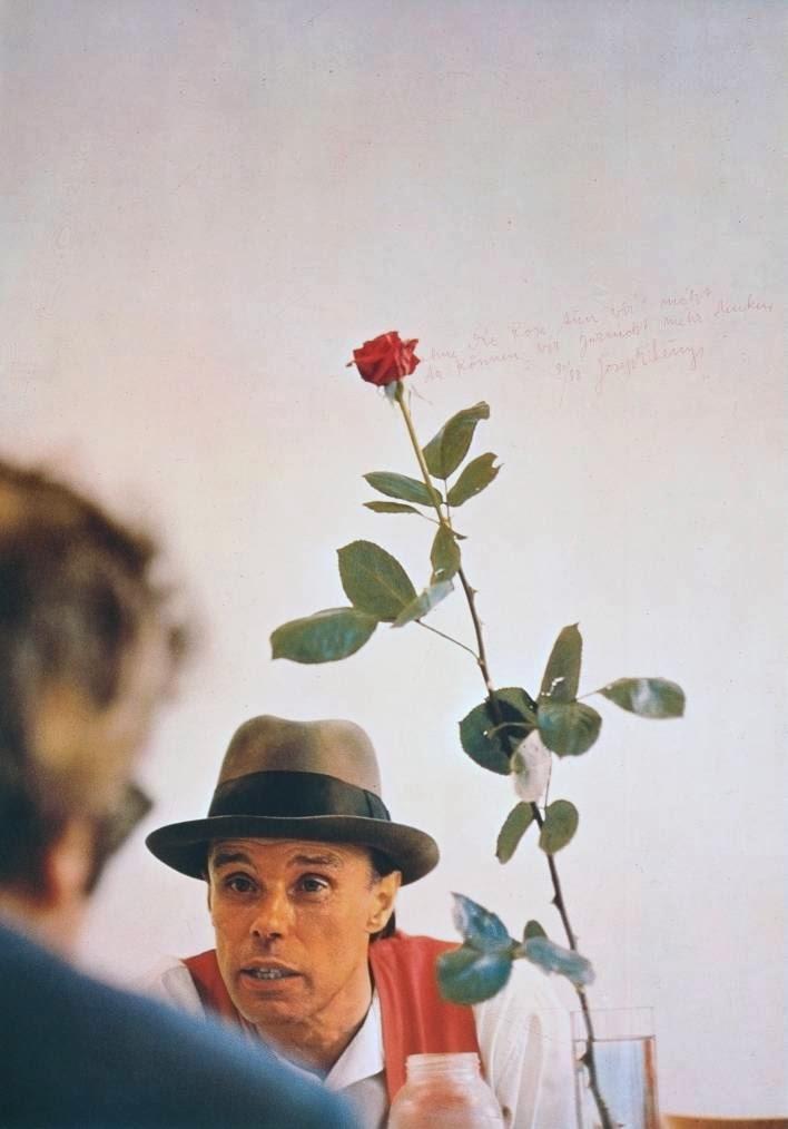 beuys+rose+2