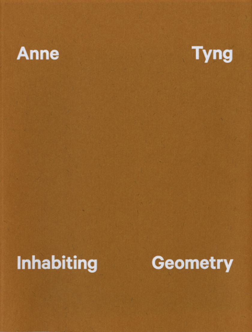 large_Inhabiting_Geometry