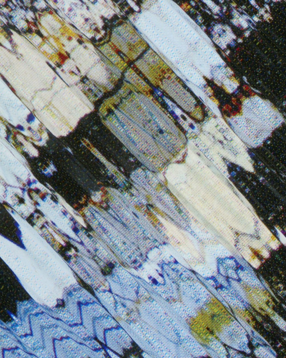 0445_B Prism Scan II (Cross Polarized Mesosiderite) (detail)-Tauba-Auerbach-large