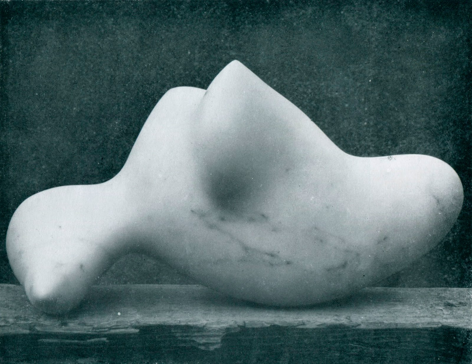 5. Aquatique (aquatic), 1953