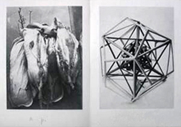 Beuys1975BieneinderKunst350