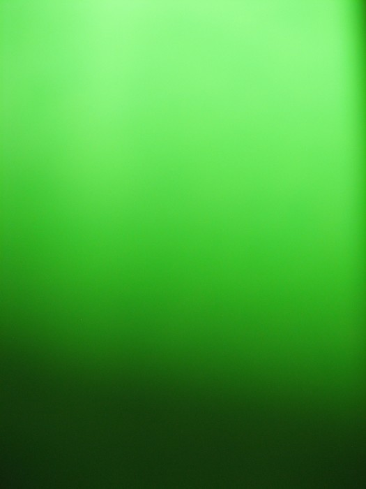 51.Green_light-525x700