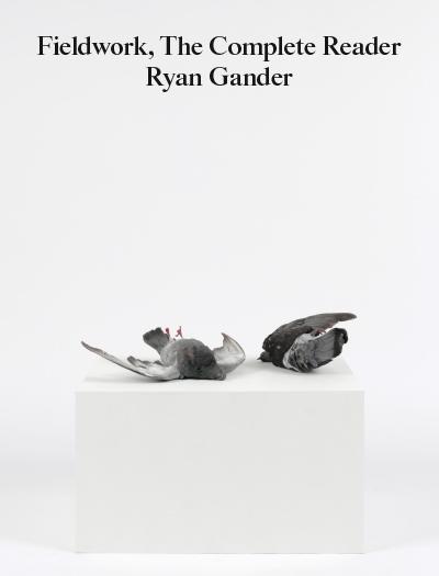 95_gander-fieldworkcover2400px
