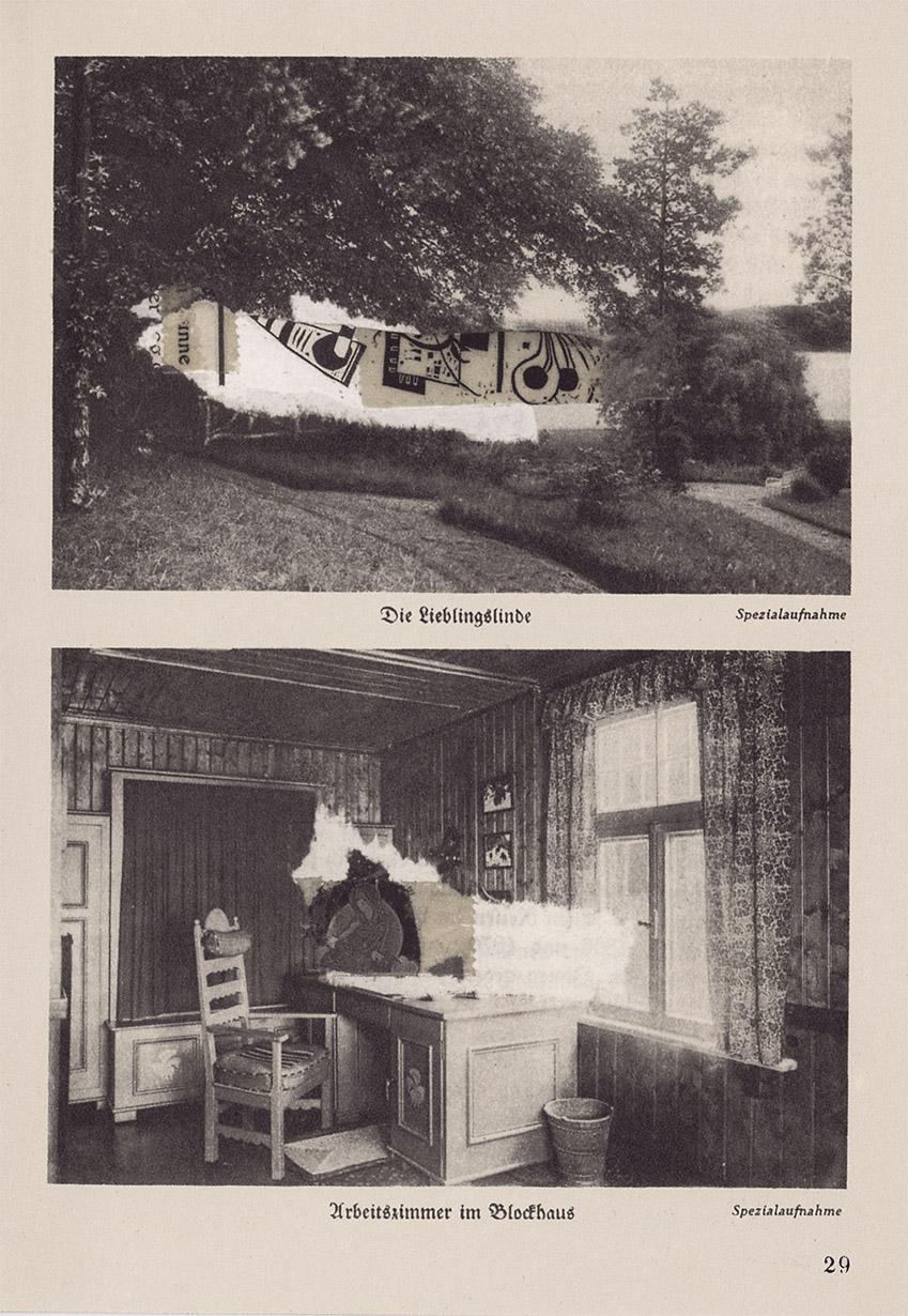 steiger-collage-web